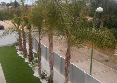 jardinería-palmeras-césped artificial-burriana